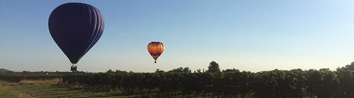 guide hachette des vins bio 2019